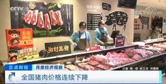 全国猪肉价格连续下降 生猪产能开始逐渐恢复