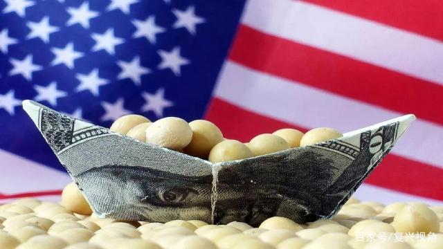 我国的大豆是如何从一个生产王国,沦落到进口大国的?
