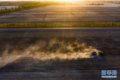 建党百年看中国|创新发展之农业现代化之路